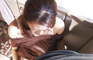 Voluptuous busty girlfriend Rika Fujishita deepthroats and gets her cuchy plowed without mercy